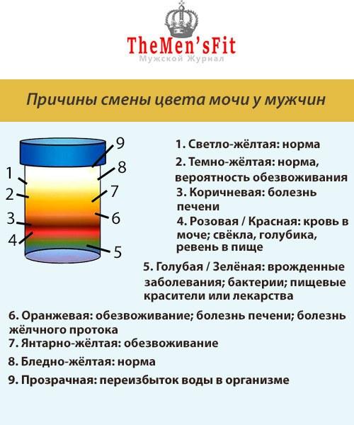 таблица изменений цвета мочи у мужчин и причины