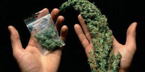 Вред марихуаны. Какой вред курения травки для мужчин
