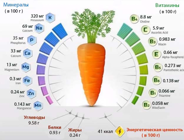 состав свежей моркови