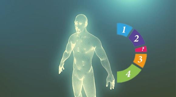 векторное изображение человека