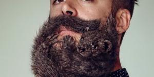 Как отрастить бороду: гид для новичков по стайлингу и отращиванию бороды.
