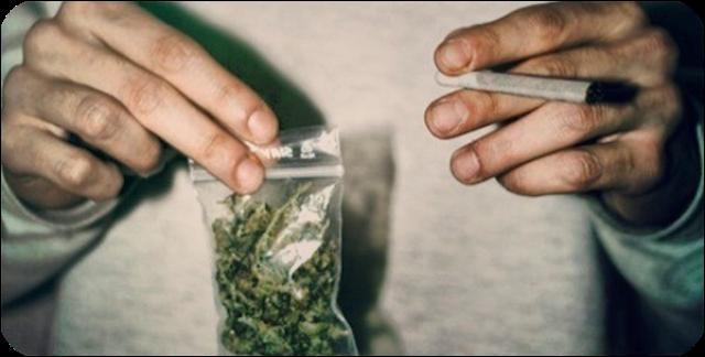 Последствия курения травки: для мужчин, влияние на организм, вред и польза
