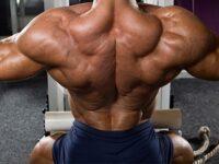 Как накачать крылья мужчине без химии в спортзале