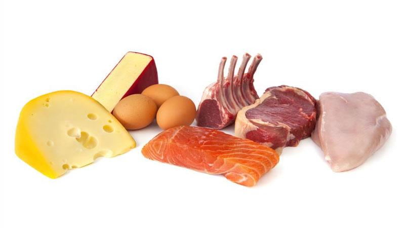Продукты богаты белком