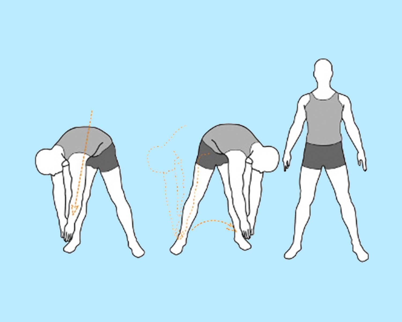 разминочное упражнение наклоны тела