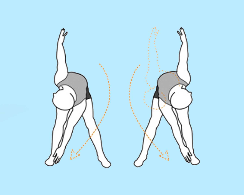 разминочное упражнение поворотами туловища