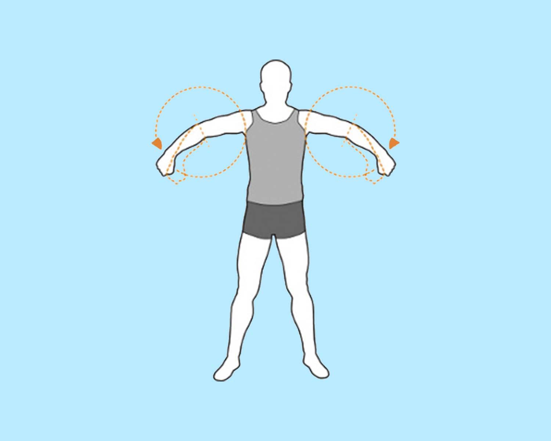 разминочное упражнение вращение предплечий