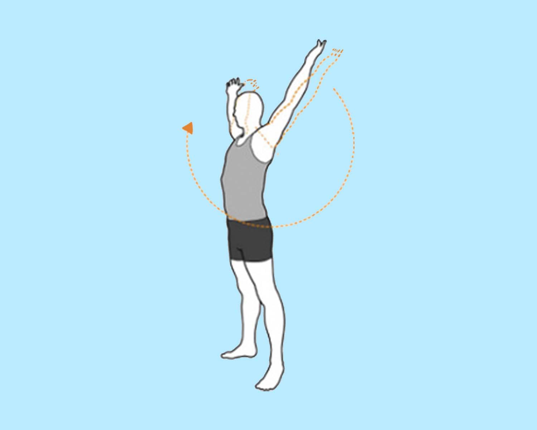 разминочное упражнение вращение рук